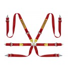 Sabelt Rally 6 Point Harness